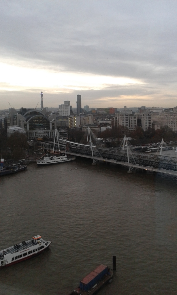 View of London from the London Eye...must see.