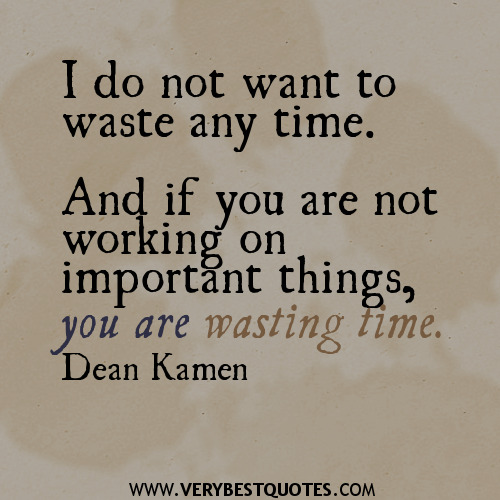 I-do-not-want-to-waste-any-time.-And-if-you-are-not-working-on-important-things-you-are-wasting-time-quotes.